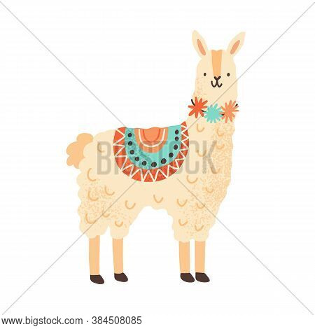 Cute Childish Lama Character. Adorable Funny Alpaca In Simple Scandinavian Style. Flat Vector Cartoo