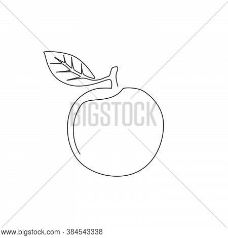One Continuous Line Drawing Of Whole Healthy Organic Orange For Orchard Logo Identity. Fresh Tropica