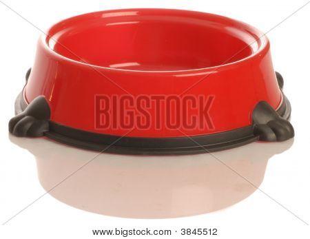 Red Dog Food Dish