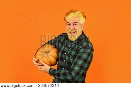 Farmer Carry Big Pumpkin. Man Bearded Rustic Farmer Presenting Vegetables. Farming And Agriculture.