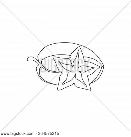 One Single Line Drawing Of Whole Healthy Organic For Starfruits Orchard Logo Identity. Fresh Star Fr