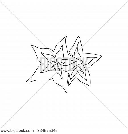 Single Continuous Line Drawing Of Whole Healthy Organic Starfruit For Orchard Logo Identity. Fresh S