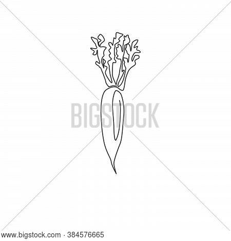 One Single Line Drawing Of Whole Healthy Organic White Radish For Farm Logo Identity. Fresh Japanese