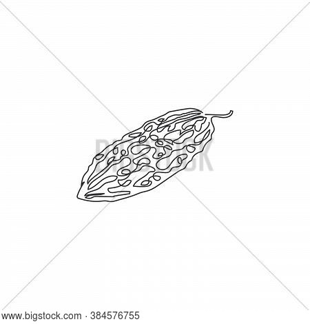 One Single Line Drawing Of Whole Healthy Organic Bitter Gourd For Farm Logo Identity. Fresh Bitter M