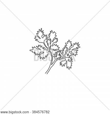 One Continuous Line Drawing Of Healthy Organic Coriander Leaf For Farm Logo Identity. Fresh Chinese