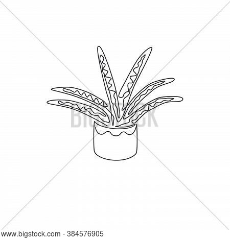 Single Continuous Line Drawing Of Potted Snake Plant For Home Decor Logo Identity. Fresh Evergreen P