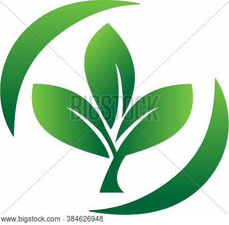 Logo Vector With Three Leaves Surrounded By Two Arcs. Leaves Logo. Nature Leaf Logo. Eco Leaf Logo.