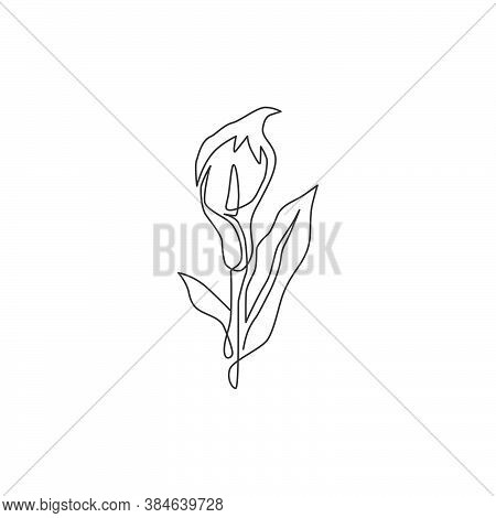 Single One Line Drawing Of Beauty Fresh Arum Lily For Wall Home Decor Poster Art. Printable Decorati