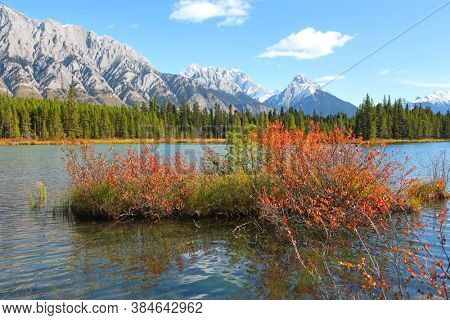 Colorful  autumn bush in the lower Kananaskis lake in Alberta,Canada