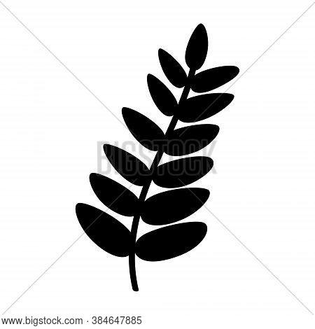 Silhouette Of A Rowan Leaf Isolated On A White Background. Black Rowan Leaf. Flat Vector Illustratio
