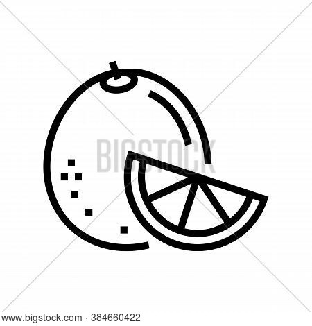 Orange Aromatherapy Line Icon Vector. Orange Aromatherapy Sign. Isolated Contour Symbol Black Illust