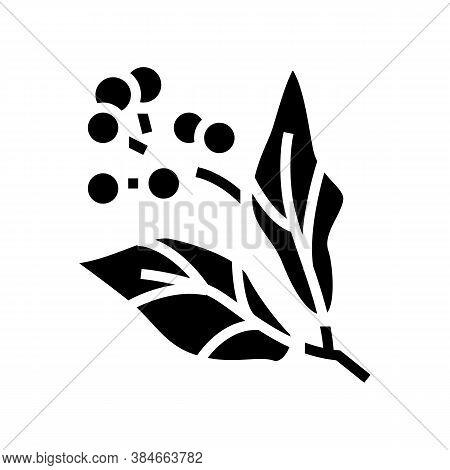 Camphor Aromatherapy Glyph Icon Vector. Camphor Aromatherapy Sign. Isolated Contour Symbol Black Ill