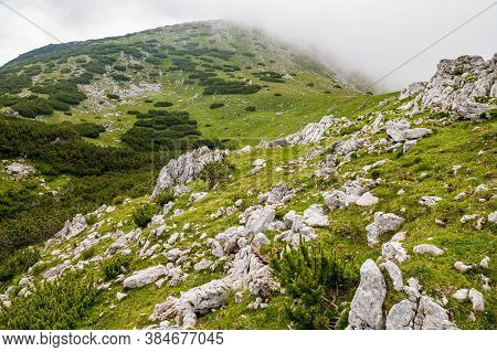 Alpine Summermeadow Large Limestone Rocks And Blue And Yellow Flowers With Spring Gentian (gentiana