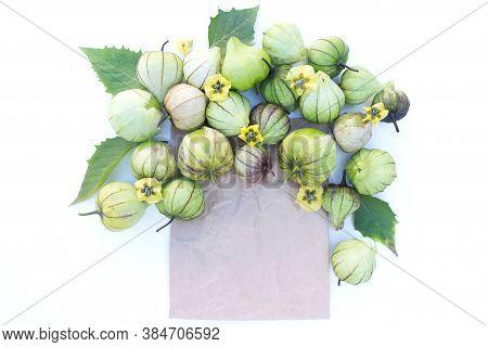 Autumn Vegetables Still Life Composition. Tomatillo On A White Background.seasonal Sale Concept, No