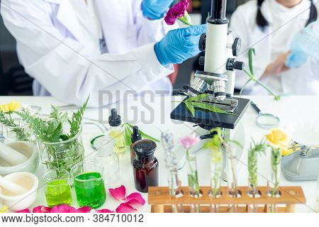 Asian Girl Leaning And Education With Woman Science Lab Research Flower With Microscope For Natural