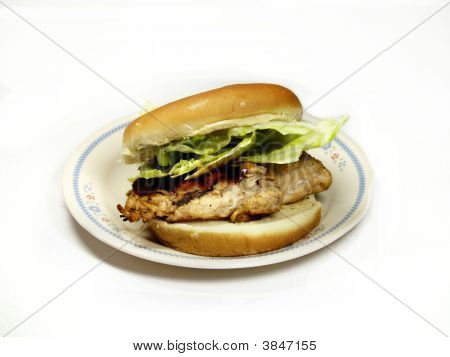 Grilled  Bbq Chicken Breast Sandwich
