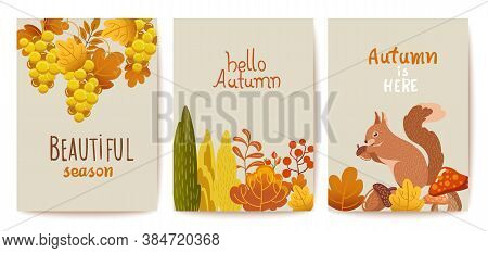 Set Of Autumn Thematics Cards. Grapes, Bushes, Leaves, Twigs, Squirrel, Mushrooms And Acorn