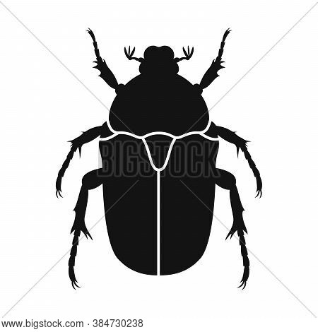 Chafer Vector Icon. Black Silhouette Of Chafer Beetle. Insect Icon Isolated. Vector Illustration. Ch