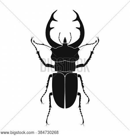 Stag Beetle Vector Icon. Insect Icon Isolated. Black Silhouette Of Stag Beetle. Vector Illustration.