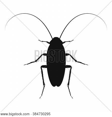 Cockroach Vector Logo. Insect Icon Isolated. Black Silhouette Of Cockroach. Vector Illustration. Coc