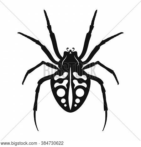 Spider Vector Icon. Black Silhouette Of Spider. Insect Icon Isolated. Vector Illustration. Spider Lo