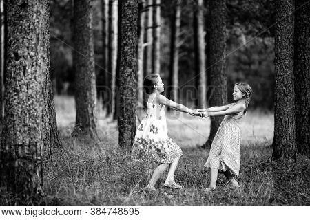 Two little girls for the holding hands in the pine forest. Black and white photo.