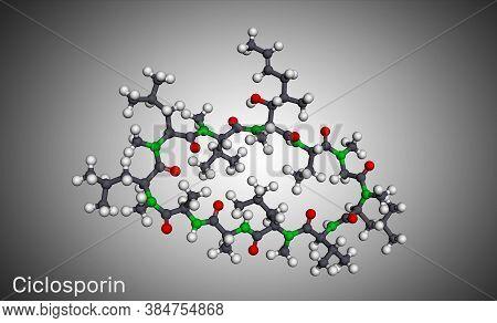 Ciclosporin, Cyclosporine, Cyclosporin Molecule. It Has Immunomodulatory Properties, Prevent Organ T