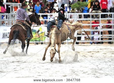 Bronco Ride At Rodeo Show