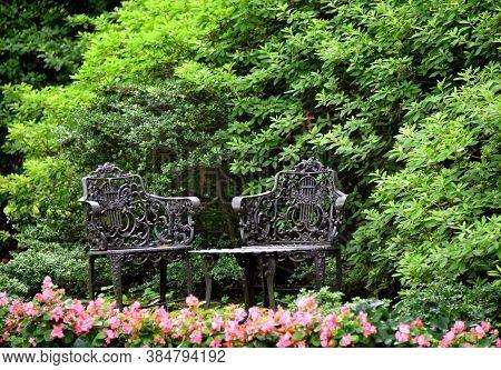 Garden Oasis With Elegant Iron Furniture