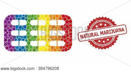 Pill Blister Collage Icon Of Filled Circle Items In Various Sizes And Lgbt Multicolored Color Tinges