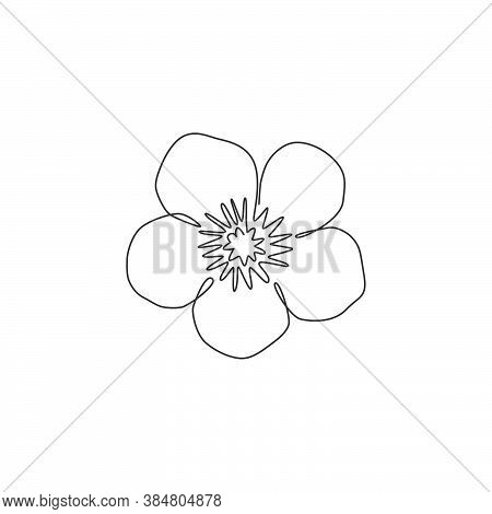 One Continuous Line Drawing Beauty Buttercup Fresh Top View For Home Decol Wall Poster. Printable De
