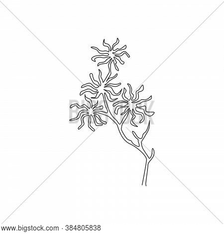 One Continuous Line Drawing Beauty Fresh Witch Hazels For Home Art Wall Decor Poster Print. Decorati