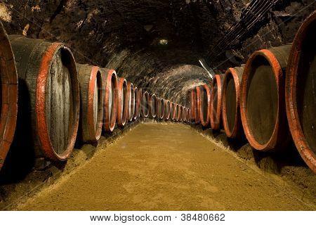 Wine Barrels In Winery Cellar