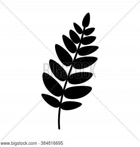 Silhouette Of A Rowan Leaf Black Mountain Ash Leaf. Black Rowan Leaf. Flat Vector Illustration