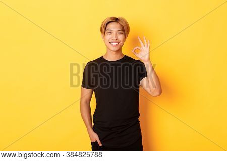 Portrait Of Satisfied And Happy Asian Smiling Guy, Showing Okay Gesture In Approval, Praising Good W