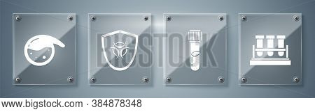 Set Test Tube And Flask Chemical, Test Tube And Flask Chemical, Biohazard Symbol On Shield And Test