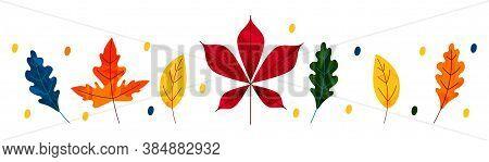 Autumn Leaves. Sales Banner With Autumn Leaves. Simple Cartoon Flat Style, Vector Illustration. Natu