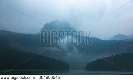 High Mountain In Fog, Coniferous Forests After Rain