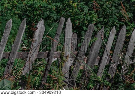 Crooked Wooden Old Fence Stands Diagonally In Green Grass Against The Background Of Forest Bushes