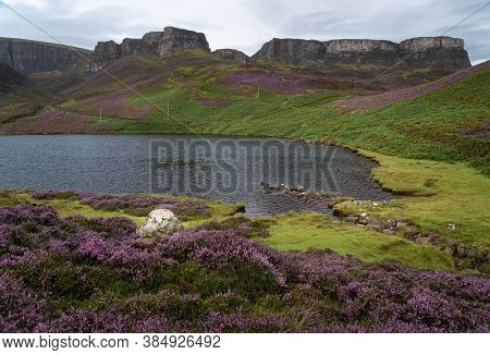 Early Morning At Loch Langaig On The Isle Of Skye, Scotland. Carpets Of Blooming Purple Heather Grow