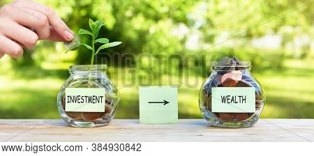 Investment, Wealth - Sticker On A Glass Jar, With Coins And A Plant In One Of Them, Where A Womans H