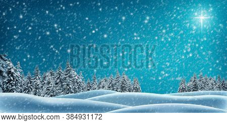 Christmas Background For Design And Greeting Cards. Winter Night In The Forest. Snow-covered Christm