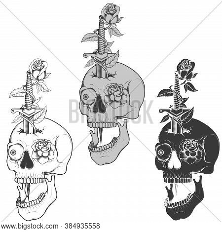 Illustration Of Skull Dagger And Roses, Traditional Art, Grayscale