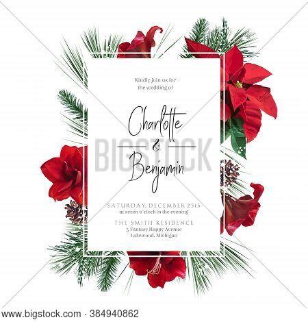 Emerald Christmas Greenery, Red Poinsettia, Amaryllis, Spruce, Fir Vector Design Frame. Woodland Sim