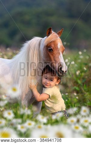A child hugs a miniature horse outdoors. Little cute girl posing with a small horse in a field in spring.