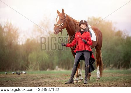 Equestrian Sport Woman Jockey Dressage Horse Outdoors
