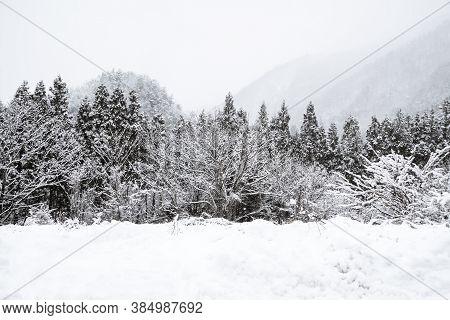 Fantastic Snow Winter Landscape Mountain In Shirakawa-go Vintage Japanese Village Park, Japan Beauty
