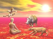Peaceful man sitting in lotus position in front of agressive wild animals by sunset poster