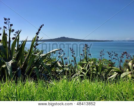View from Auckland's North Head to Rangitoto Island
