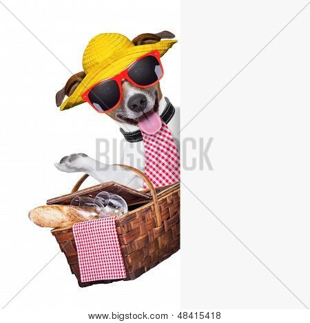 picnic dog behind placard with basket and bread poster